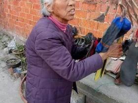 """《我是范雨素》—家政女工的""""自传""""。"""